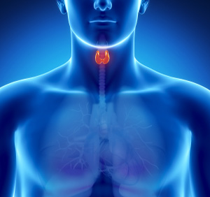 Hyperthyroidism in Cherry Run - Grand Rapids, MI